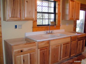 Hickory Cabinets VI